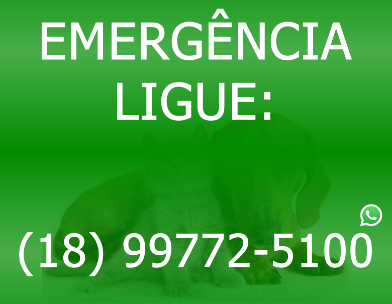 EMERGENCIA - kenkovet foco