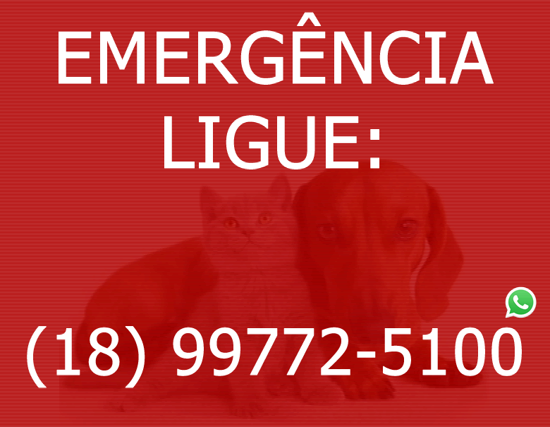 EMERGENCIA - kenkovet